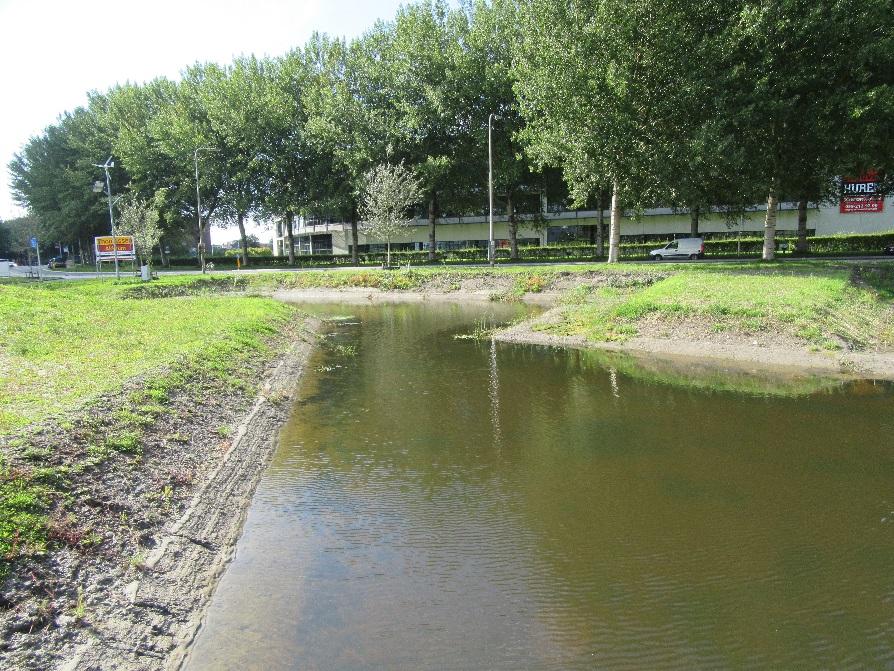 waterplanten ingebracht