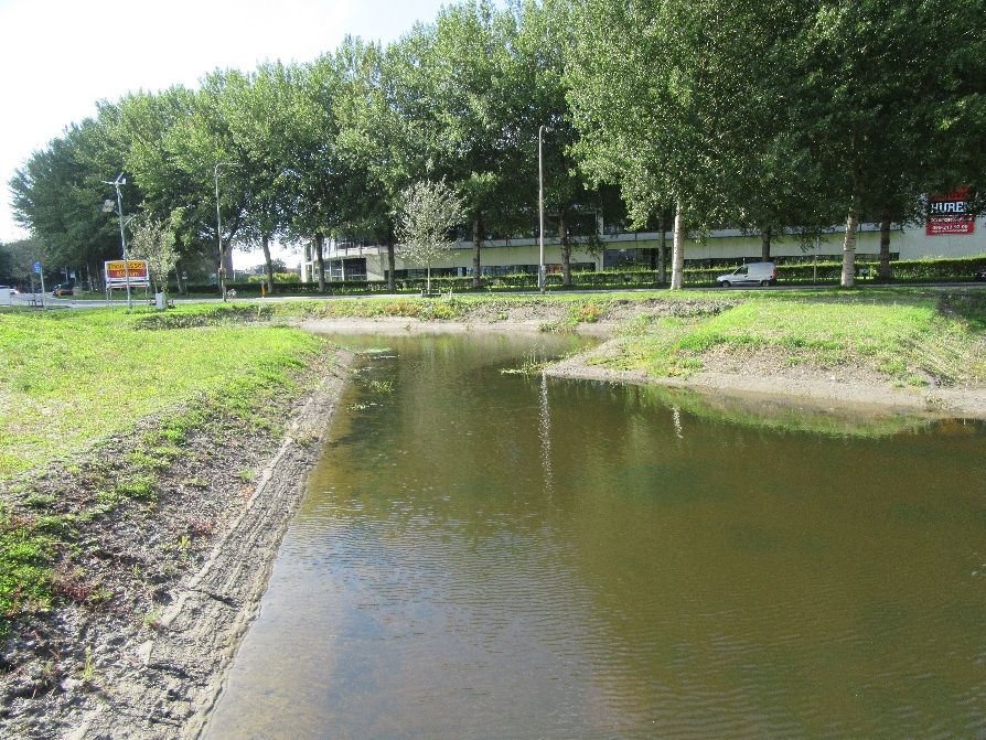 waterplanten ingebracht